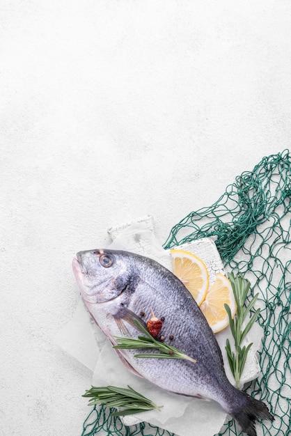 鯛の鮮魚と緑の魚網 無料写真