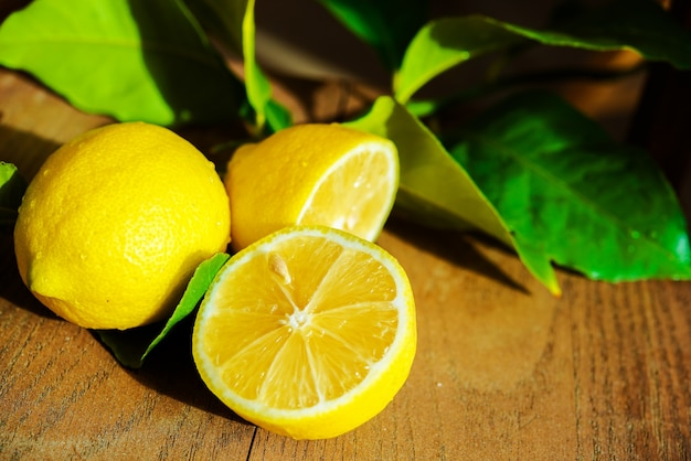 Fresh Sliced Lemon Free Photo