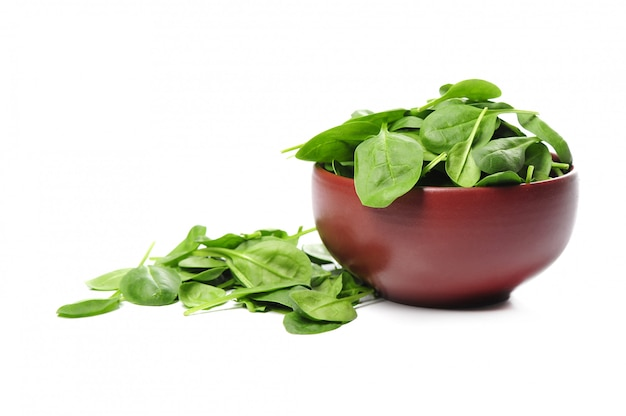 Fresh spinach leaves in bowl isolated Free Photo