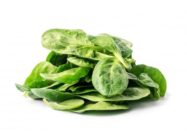Коллекция листьев свежего шпината Premium Фотографии