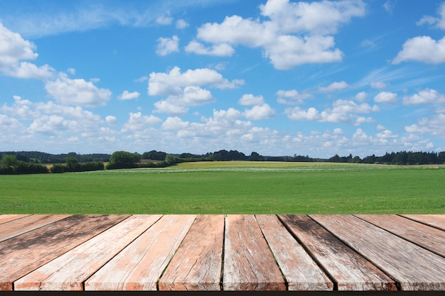 Fresh spring green grass with blue sky and wooden floor Premium Photo