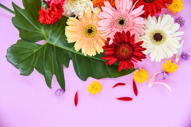 Fresh spring summer flowers frame composition tropical plant gerbera chrysanthemum Premium Photo
