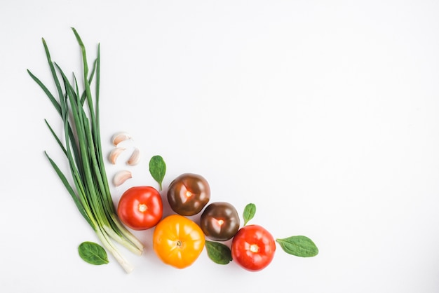 Fresh tomatoes near herbs Free Photo