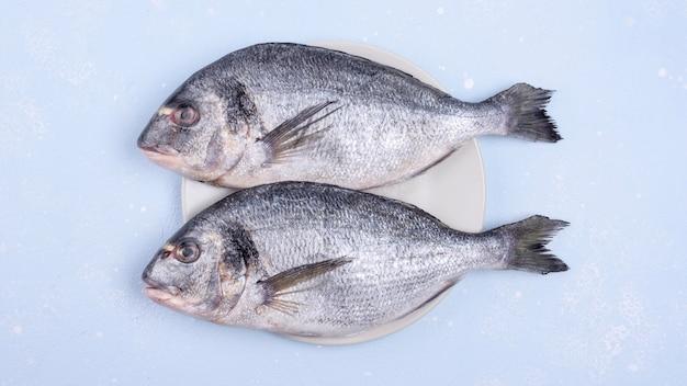 新鮮な生鮮魚 無料写真