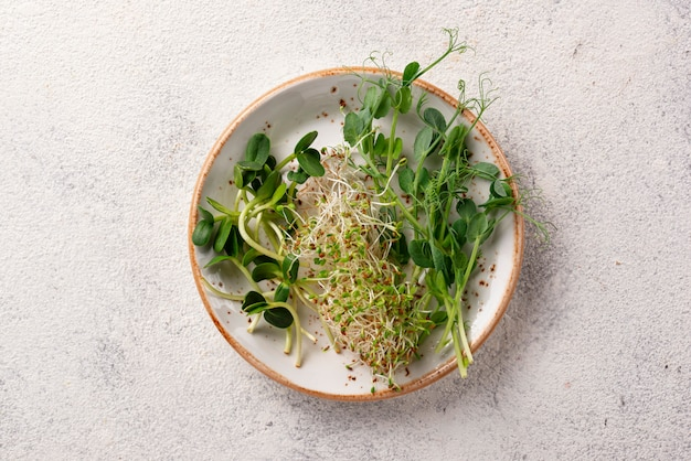 Fresh variety micro greens sprouts Premium Photo