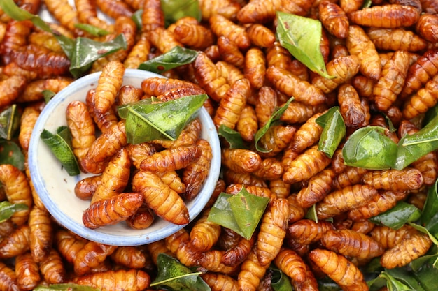 Fried insect at street food Premium Photo