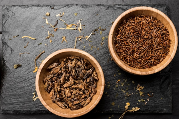 Fried insects in wooden bowl top view Free Photo