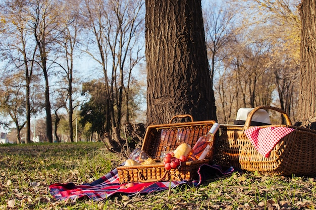 Front view beautiful picnic arrangement Free Photo