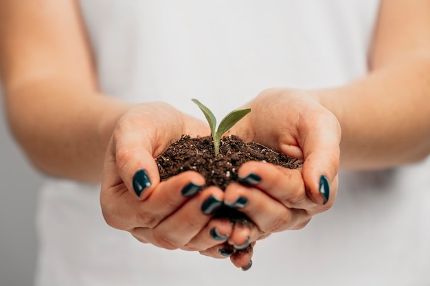 Front view of female hands holding soil and little plant Free Photo