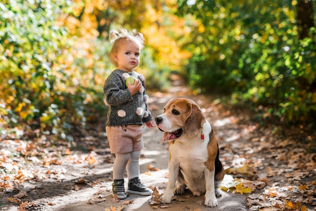 Front view of girl holding ball standing near beagle dog in forest Free Photo