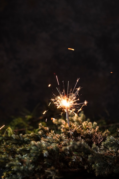 Front view handheld firework with black background Free Photo