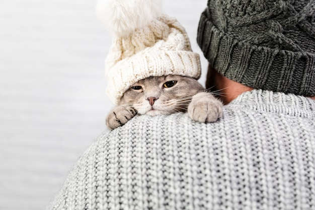 Front view kitten in male arms Free Photo
