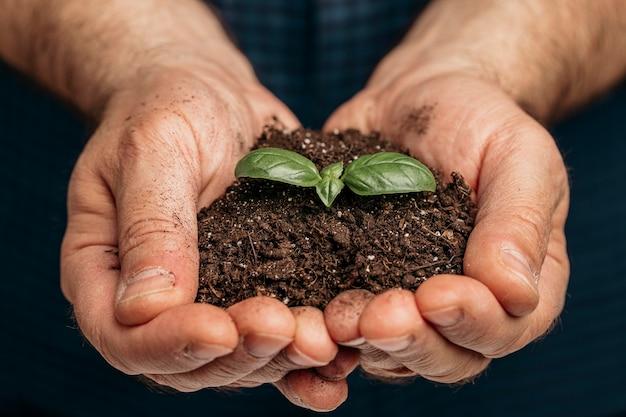 Vista frontale delle mani maschii che tengono terreno e pianta in crescita Foto Gratuite