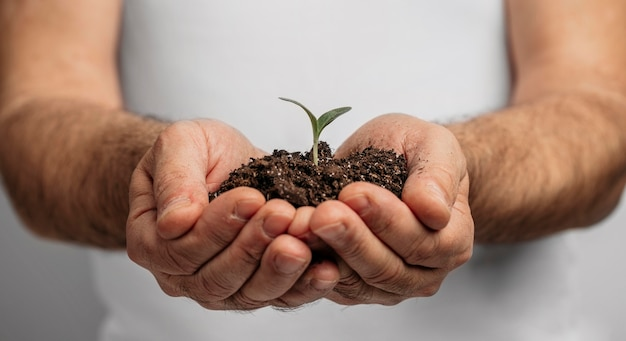 Front view of male hands holding soil and plant Free Photo