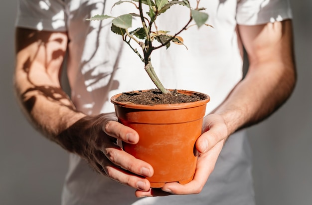 Front view of man holding pot of plant Free Photo