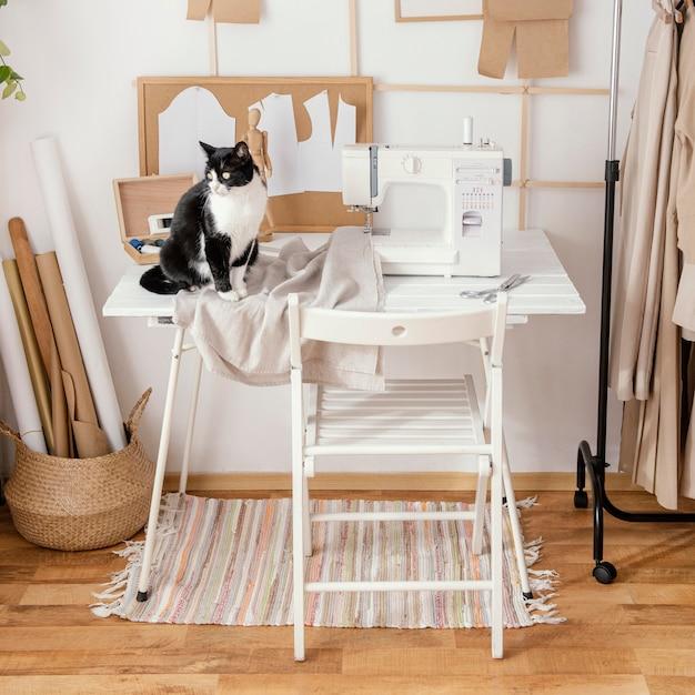 ミシンと猫の仕立てスタジオの正面図 無料写真