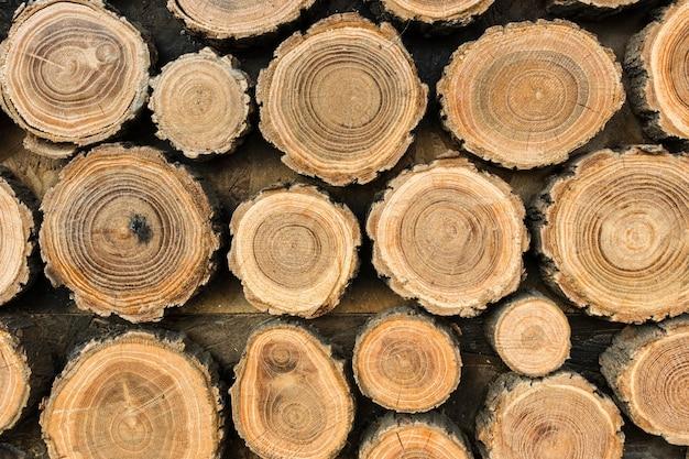 木の丸太の正面図 無料写真