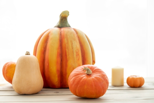 Front view pumpkins on wooden table Free Photo