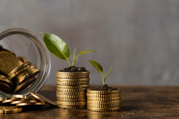 Front view of two stacks of coins with jar and plants Free Photo