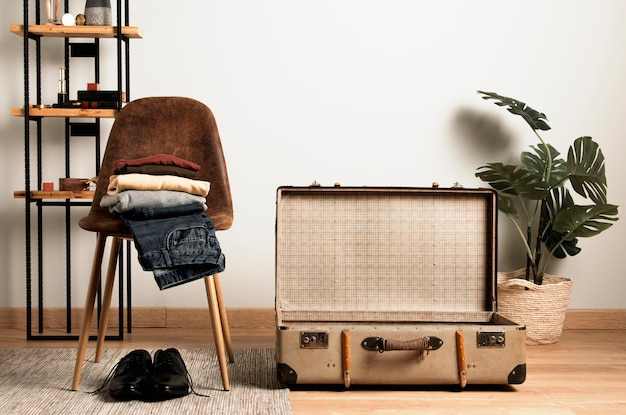 Front view vintage suitcase and interior plant Premium Photo