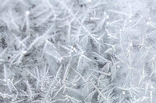 Frost on a window Free Photo