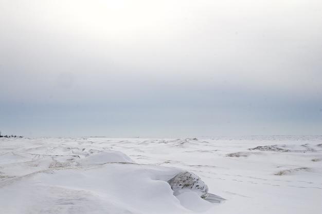 カナダの凍った湖。 無料写真