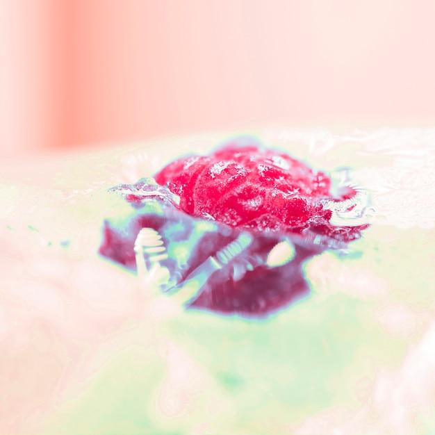Frozen raspberry Free Photo