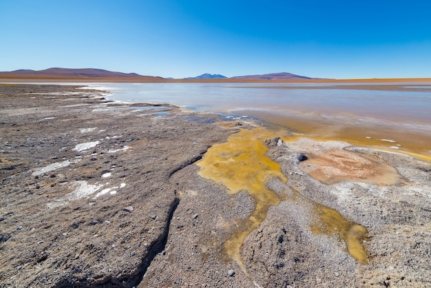 Frozen salt lake on the andes Premium Photo