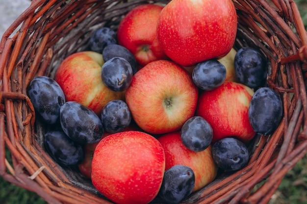 果物。赤いリンゴとプラムの籐のバスケットに入れられたさまざまな新鮮な熟した果物。 Premium写真