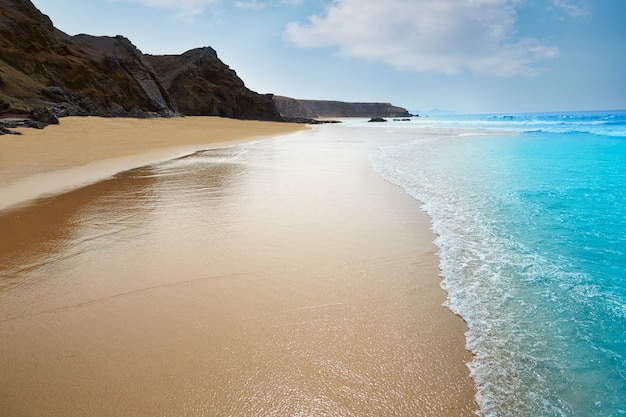 Fuerteventura la pared beach at canary islands Premium Photo