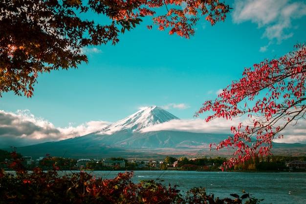 Гора фудзи осенью Premium Фотографии