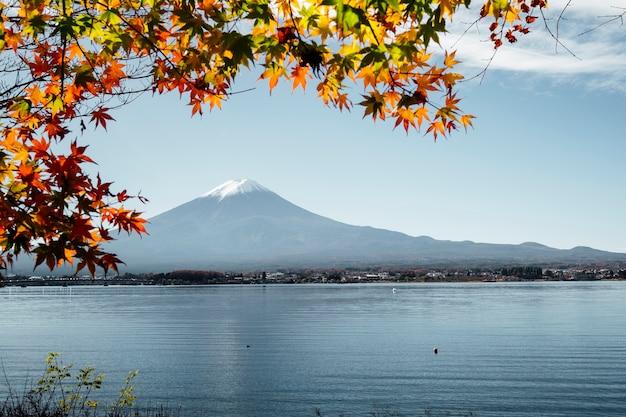 Fuji mountain and leaf in autumn at kawaguchiko lake, japan Free Photo