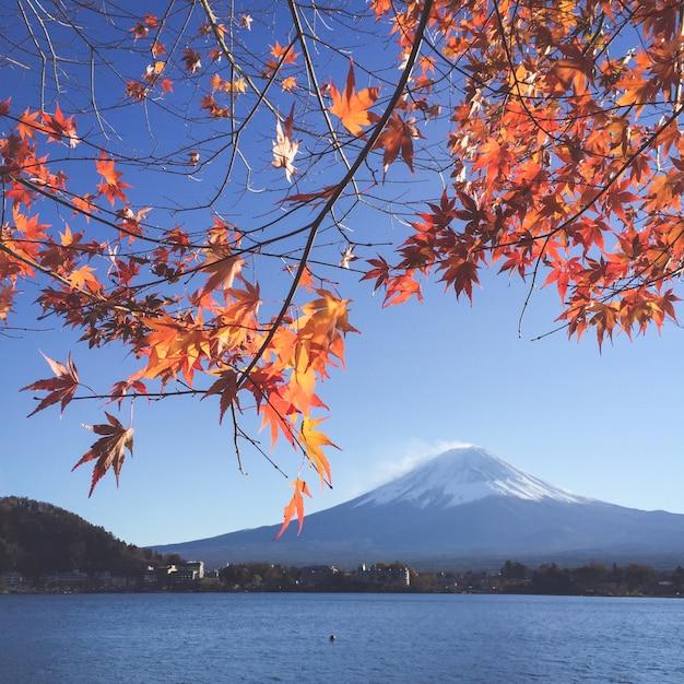Fuji spring panorama snow snowcapped Free Photo