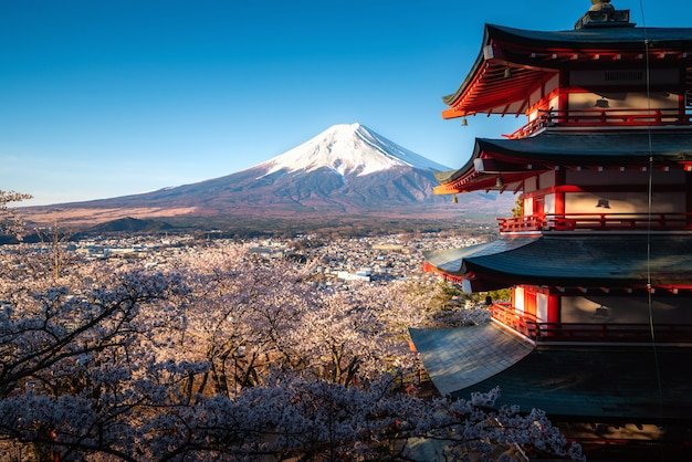 Fujiyoshida, japan at chureito pagoda and mt. fuji in the spring with cherry blossoms full bloom during sunrise. travel and vacation concept. Premium Photo
