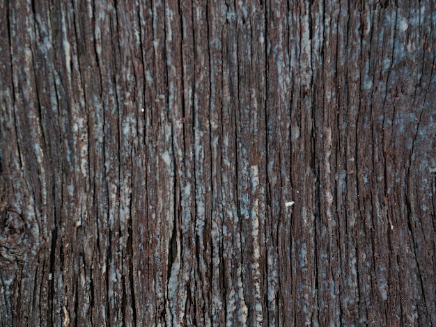 Full frame background of wooden textured Free Photo