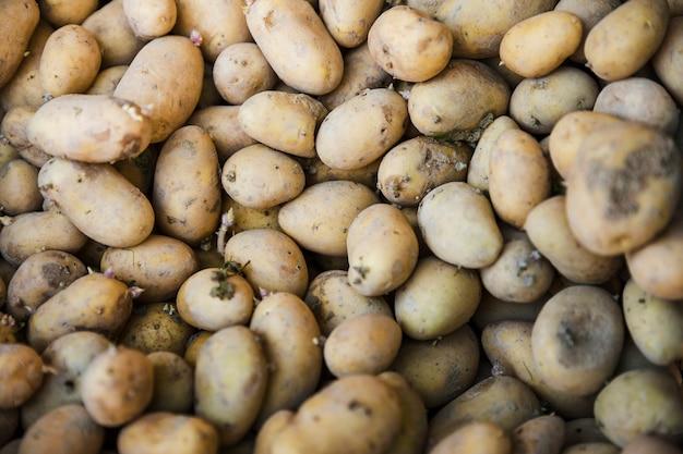 Full frame of fresh organic potato Free Photo