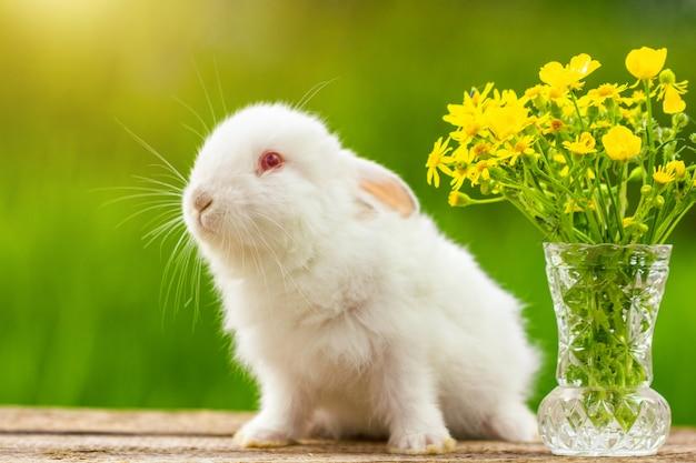 自然の中で晴れた日に花の花束と木製の面白い白い耳の小さなウサギ Premium写真