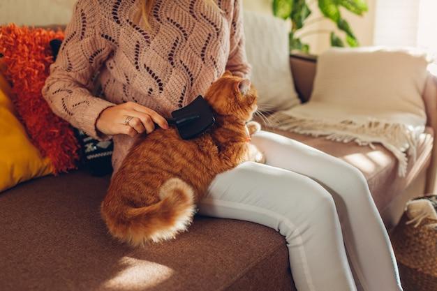 生g猫を自宅で櫛のブラシでとかします。髪を削除するペットの世話をする女性の所有者。 Premium写真