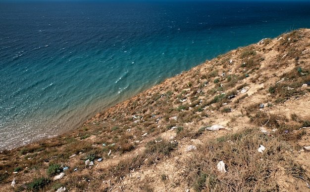 乾いた草の上に海岸に捨てられたゴミ Premium写真