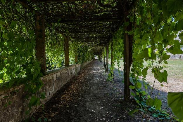 Giardino del convento di cristo circondato dal verde sotto la luce del sole a tomar in portogallo Foto Gratuite
