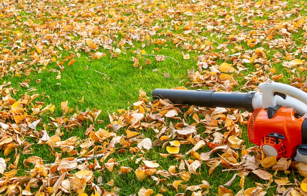 Garden vacuum cleaner on a lawn with yellow leaves on a sunny day. Premium Photo