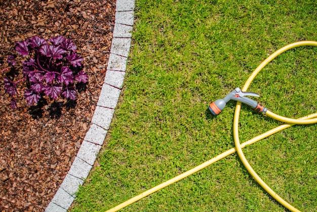 Garden water hose Free Photo