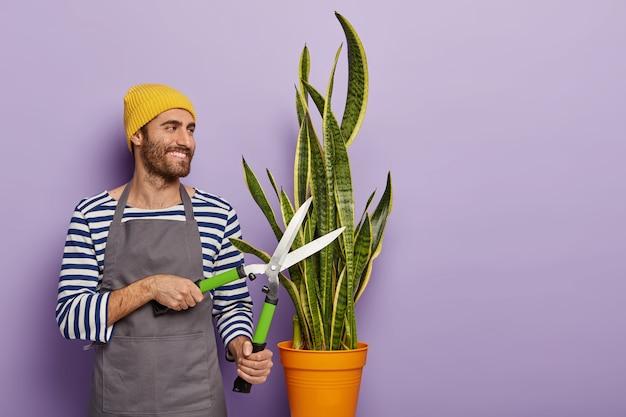 Concetto di lavoro in giardino. allegro fiorista o botanico taglia pianta in vaso con cesoie da giardinaggio, indossa maglione a righe e grembiule Foto Gratuite