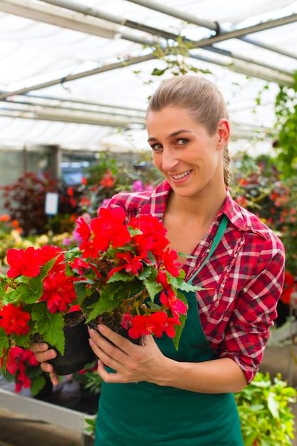 Gardener in her green house flower shop Premium Photo