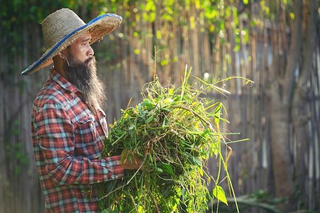 草の塊を腕に抱えている庭師 無料写真