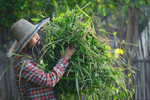 Садовник держит в руке пучок травы Бесплатные Фотографии