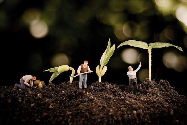 Садовник сажает дерево, растениеводство в почве на природе боке Premium Фотографии