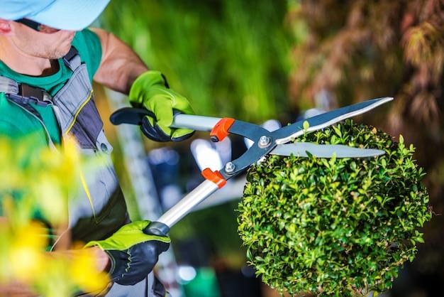 Gardener trimming plants Free Photo
