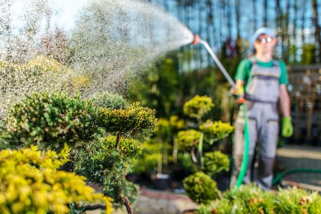 Gardener watering plants in the garden store. Premium Photo