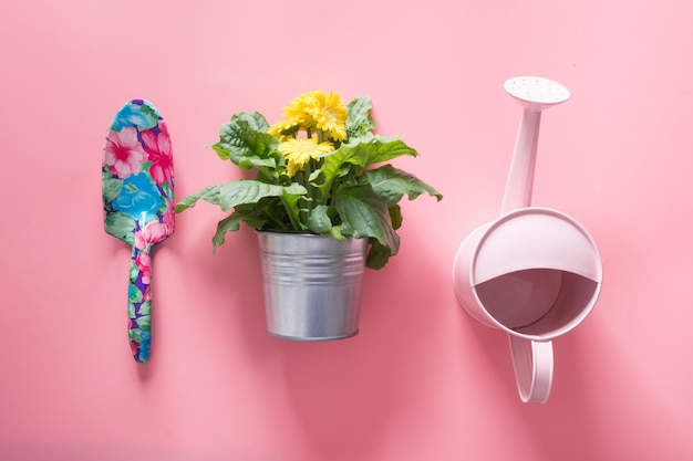 Gardening background with watering can and gerbera flowers Premium Photo